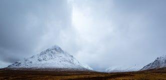 Buchaille в зиме Стоковая Фотография