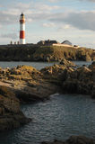 Buchanness灯塔,苏格兰 免版税图库摄影
