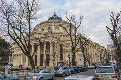 Bucharest athenaeum royaltyfria bilder