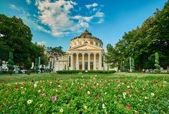 Bucharest Athenaeum Stock Image