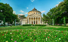 Bucharest Athenaeum Royalty Free Stock Photo