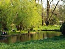The Bucharest Botanical Garden. Royalty Free Stock Image