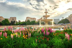 Bucharest City Center Royalty Free Stock Photography