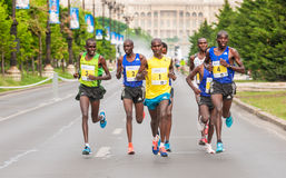 Bucharest internationell halv maraton 2015 Arkivfoto