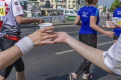 Bucharest internationell halv maraton Arkivbild