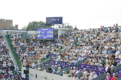 Bucharest Open 2014(7) Stock Photography