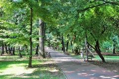 Bucharest park Royalty Free Stock Photo