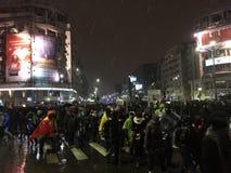 Bucharest protest Arkivbilder