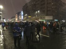 Bucharest protest Arkivfoton