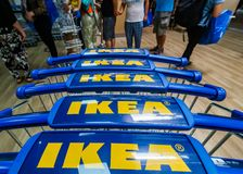 IKEA opening second store in Romania. Bucharest, Romania - June 24, 2019: Close-up with shopping carts bearing the IKEA logo taken in the opening day of the IKEA royalty free stock photography