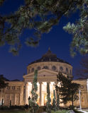 Bucharest, Romanian Atheneum Stock Photo