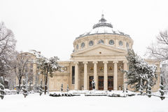 Bucharest Rumänien - Januari 17: Universitetfyrkant på Januari 17 arkivfoton