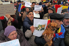 Bucharest, Rumunia - protest przeciw prezydentowi Klaus Iohannis Obraz Stock