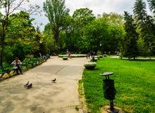 Bucharest, Rumunia - 2019 Tury?ci chodzi na alejach Cismigiu Uprawiaj? ogr?dek zdjęcia stock
