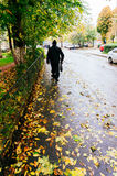 Bucharest street in Autumn Stock Photography