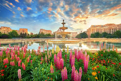 Bucharest Sunset, Unirii Square Stock Image