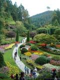 Buchart arbeitet Victoria BC im Garten Stockbilder