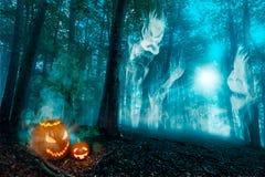 Buche Forest Fog Sunbeam Lizenzfreie Stockfotografie