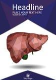 Bucheinbandschablone mit der realistischen menschlichen Leber mit dem Gallenweg Lizenzfreies Stockfoto
