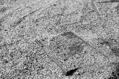 Buchen Sie auf dem Sand auf einem unscharfen Hintergrund, umfasst mit dem Sand, Schwarzweiss, einfarbig lizenzfreies stockbild