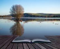 Buchen Sie Konzept Spiegelreflexionen der Landschaft in den Überschwemmungsgebieten herein Lizenzfreies Stockbild