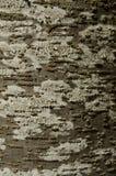 Buchenbaumrinde mit brauner und weißer Beschaffenheit mit grünem Moos und Lizenzfreies Stockbild