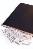 Buchkalender-Espritgeld stockfotos