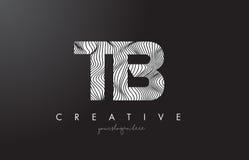 Buchstabe-Logo TB T B mit Zebra-Linien Beschaffenheits-Design-Vektor Stockbild