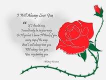 Buchstabe mit gezeichneter eigenhändig Rose stock abbildung