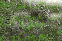 Buchstaben auf dem Grab von des 19. Jahrhunderts überwältigt mit Moos Forgott Lizenzfreies Stockbild