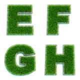 Buchstaben E, F, G, H als Rasen - Satz 3d Lizenzfreies Stockbild