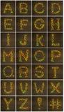 Buchstaben gemacht mit Süßigkeiten Lizenzfreie Stockbilder