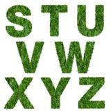 Buchstaben s, t, u, v, w, x, y, z gemacht vom grünen Gras Lizenzfreies Stockbild