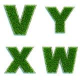 Buchstaben V, Y, X, W als Rasen - Satz 3d Stockbild