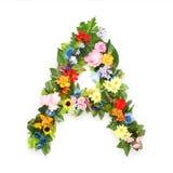 Buchstaben von Blättern und von Blumen Stockbild