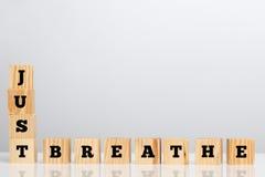 Buchstabierende Holzklötze - atmen Sie einfach Lizenzfreies Stockfoto