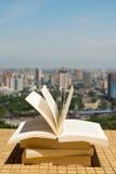 Buchstapel auf einem Dach Lizenzfreie Stockfotos