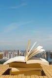 Buchstapel auf einem Dach Lizenzfreie Stockbilder