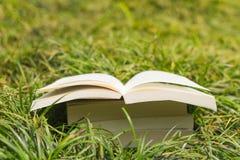Buchstapel im Gras Stockfotografie