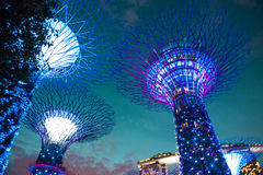 Bucht arbeitet Singapur im Garten lizenzfreie stockfotos
