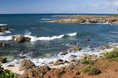 Bucht des Haifischs Stockbild