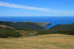 Bucht und Ackerland Otanerito Lizenzfreie Stockbilder