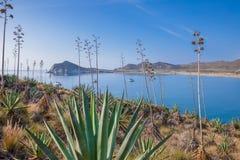 Bucht und Strand Genoveses vom Berg in Gata Cape Almeria lizenzfreie stockfotos
