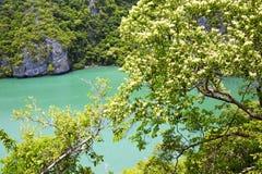 Buchtzusammenfassungsgrünlagune und -wasser Kho Tao Lizenzfreie Stockfotos