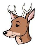 Buck. Cartoon illustration of a buck Royalty Free Stock Photo