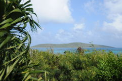 Buck island, st. croix Stock Photography