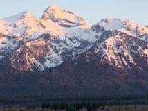 Buck Mountain fotografia stock