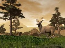 Buck in the mountain - 3D render Stock Photo