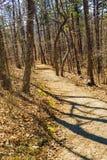 Buck Mountain Trail fotografia stock libera da diritti