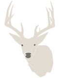 Buck silhouette. This is a hand-drawn silhouette of a whitetail buck stock illustration